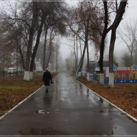 Парк железнодорожников. :: Anatol Livtsov