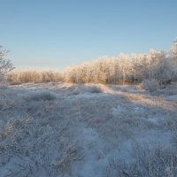 Зимняя полянка!!! :: Олег Кулябин