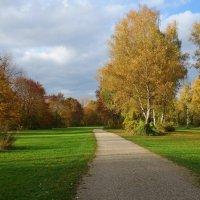 Осень в рощах нежна, словно бархат... :: Galina Dzubina