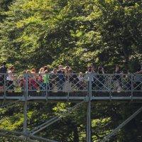 На мосту Марии :: Сергей Цветков