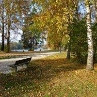 Какая все же благодать   в осеннем парке посидеть...... :: Galina Dzubina