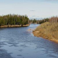 Река Амня :: Дмитрий Сиялов