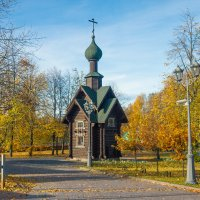 Осень золотая 9 :: Виталий