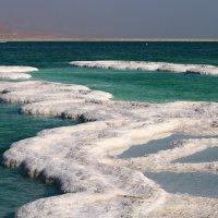 берег Мертвого - Содомского моря в Иудейской пустыне в Израиле :: vasya-starik Старик