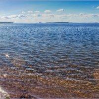 Южный берег Белого моря :: Светлана Тремасова