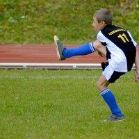 Хорошо ударил...по мячу... :: Дмитрий Петренко