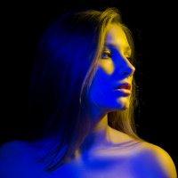 Портрет в сине-желтых тонах :: Альберт