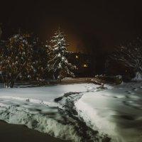 Зима :: Алексей Сибирцев