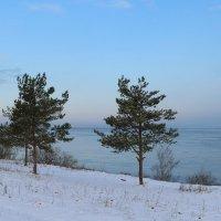 Ледостав на озере Ильмень :: Тимофей Черепанов