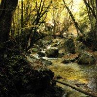 Золотая река :: Yoris2012 Lp.,by >hbq/