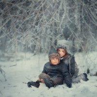 winter coming :: Anna Lipatova
