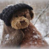 У нас за окном зима! :: Nataly St.