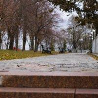 парк :: Богдан Строчков