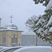 в снежный день :: Елена