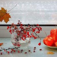 Красавица осень прощается с нами и красок своих не жалеет она.... :: Павлова Татьяна Павлова