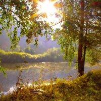 Лето на Белой :: Евгения Кузнецова
