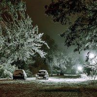 Первый снег. :: Владимир Фисенко