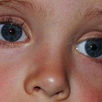 Тимошка- глаза ребенка :: Александр Прокудин