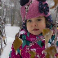 Замороженная осень :: Юля Колосова
