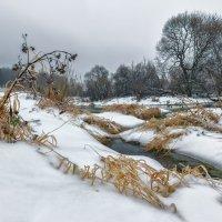 Поздняя осень... или ранняя зима. :: Николай Андреев