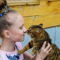 поцелуи с кошкой :: Света Кондрашова