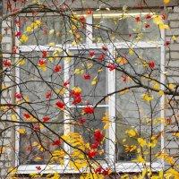 Новое окно в детском саду :: Валерий Талашов