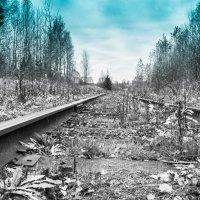 Старая железная дорога. :: Сергей Сотников