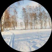 Открытие лыжного сезона :: Николай Мальцев