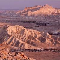 Пустыня Цин, Израиль :: Lmark