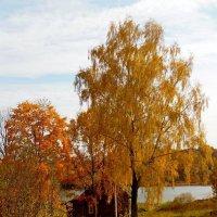 Двор в деревне! :: Андрей Буховецкий