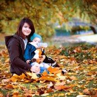Золотая осень :: Владимир Крамс