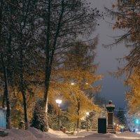 Цвет не наступившей зимы :: Alexander Royvels