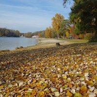 Осень радует тишиной… успокаивается душа, замедляется время...... :: Galina Dzubina