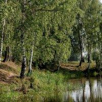 У озера :: Владимир Безбородов