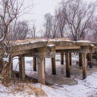 Мост через Хурбинку! :: Ирина Антоновна