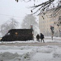 Заметает зима, заметает.... :: Татьяна Васильева