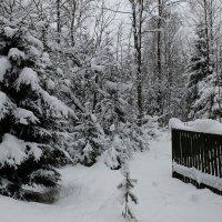 На память..о погоде ноября :: tipchik