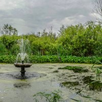 Старый пруд :: Владимир Дороненко
