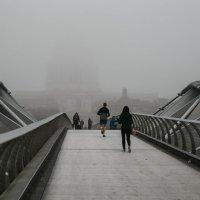 Туман :: Antonina Burton