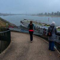 Рейн в тумане :: Witalij Loewin