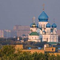 Москва Николо-Перервинский монастырь. :: Виталий Лабзов