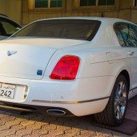 Bentley :: Kristina Suvorova