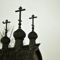 Купола в Коломенском. :: Владимир Болдырев