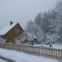 Зимняя Осень :: Mariya laimite