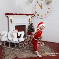 Маленький Санта :: Владимир Хижко