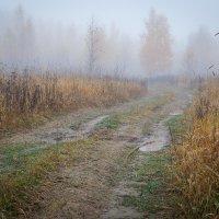 У болота :: Юрий Савченко