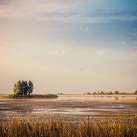 Озеро :: Кирилл Ларионов