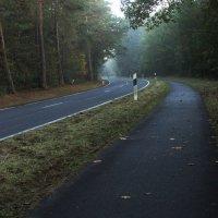 мотоциклист несется в туман :: Лилия Winоgradowa
