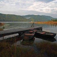 Размечтались лодочки,завидев белый теплоход... :: Александр Попов