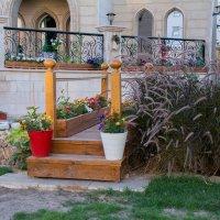 Сад во дворе дома :: Kristina Suvorova